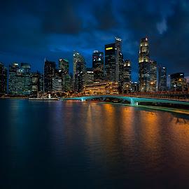by Gordon Koh - City,  Street & Park  Night ( reflection, city, dusk, night, asia, city park, skyline, singapore, shenton, modern, urban, symmetry, nightscape, cityscape, modern city, esplanade, blue hour, lake, park, mbs )