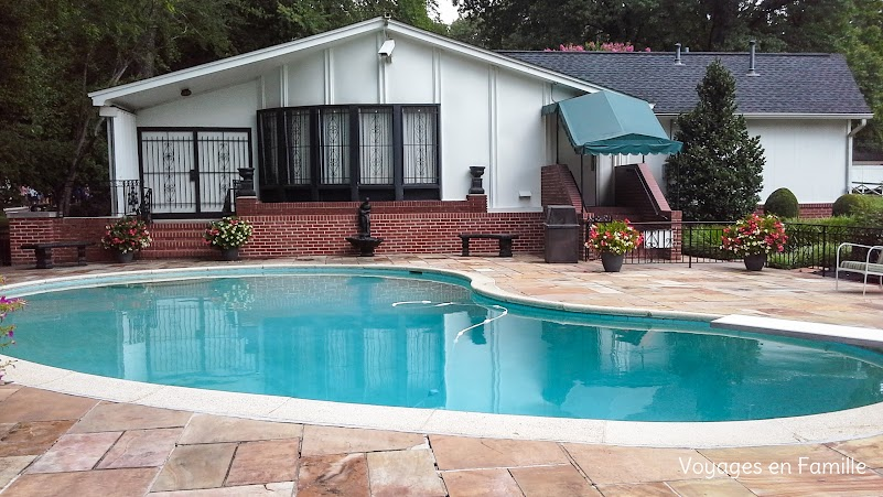 Pool at Graceland