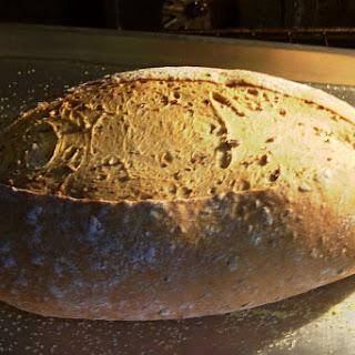 Malted Wheat Bread.