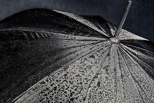 L'ombrello di paolo1954