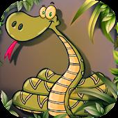 Digital Snake 3D