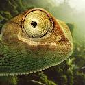 Jungle Chameleon LWP icon