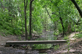 Photo: Putah Creek Parkway - Creek Crossing