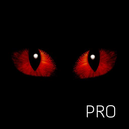techmighty avatar image