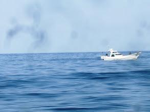Photo: 御近所の船も好調・・・かな?