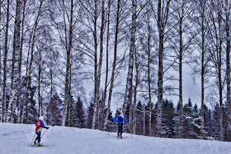 Photo: Norwegian Winter  So many people are enjoying skiing and cross-country. And I enjoy taking photos of them:D  クロスカントリーとスキーをしているノルウェー人がいっぱい #ForestFriday curated by +Rudolf Vlček