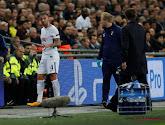 Tottenham geeft grootste concurrent van Toby Alderweireld contract tot 2024