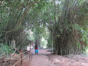 Photo: Entering tourist village near Chiang Rai