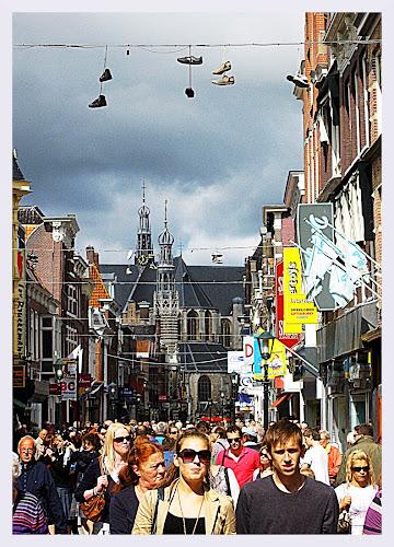 Olanda non solo zoccoli di GIOVANNI_V