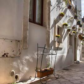 by Domenico Liuzzi - City,  Street & Park  Historic Districts