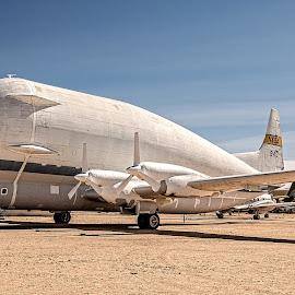 Lockheed C-130A by Richard Michael Lingo - Transportation Airplanes ( arizona, planes, transport, transportation, airplanes,  )