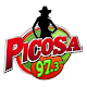 Picosa 97.3 FM Download on Windows