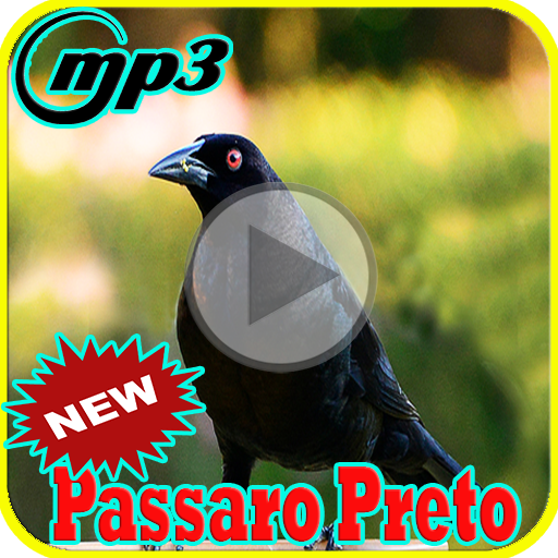 CANTO PRETO BAIXAR GRATIS PASSARO MP3