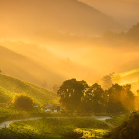 Somewhere out there by Alexander Nainggolan - Landscapes Mountains & Hills ( hills, mountains, nature, green, sunrise, landscape, misty )