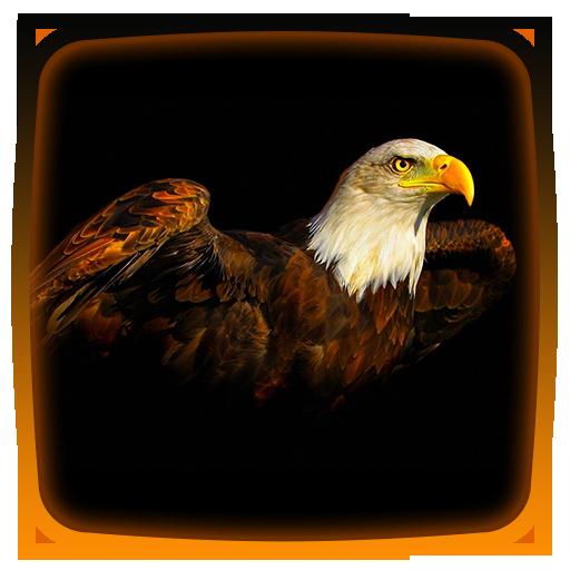 Eagles Live Wallpaper