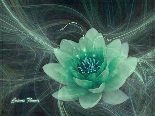 Cosmic Flower