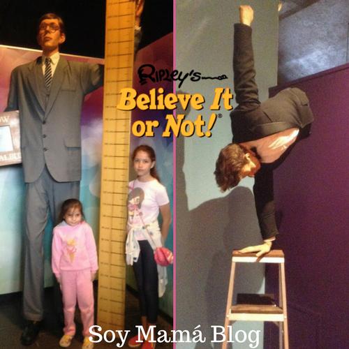 Museo de Ripley en Veracruz con niños: Niñas con el más alto
