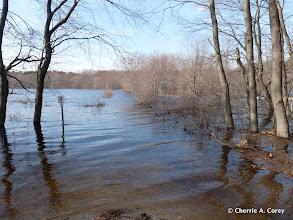 Photo: Dike trail, east