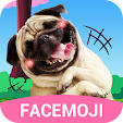 Dog Face St.. file APK for Gaming PC/PS3/PS4 Smart TV