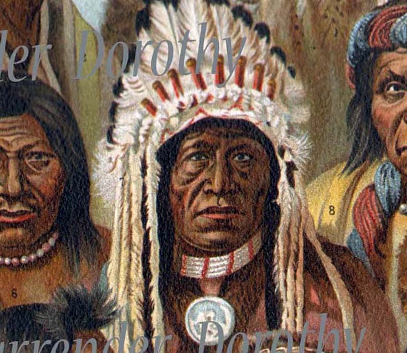 na'vi indians vs american indians 2018-2-14 a new exhibit at the national museum of the american indian takes visitors from the trail of tears to native americans in pop culture we'll talk with the curators.