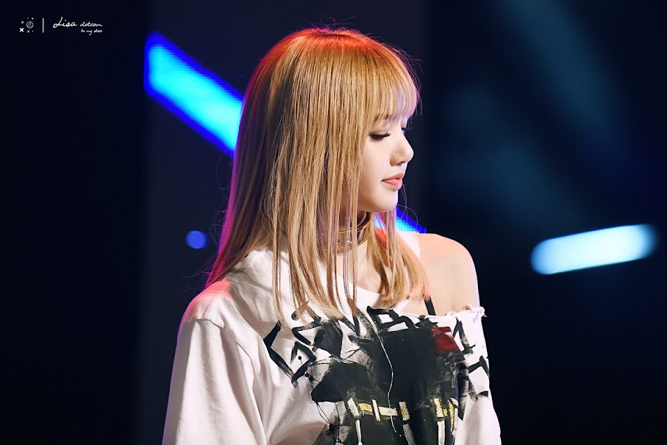 lisa profile 13