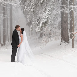 Winter Wonderland Wedding by Daniel Venter - Wedding Bride & Groom ( married, wedding, snow, white, couple )