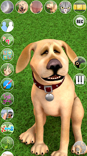 App Talking John Dog: Funny Dog APK for Windows Phone
