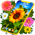 Live Wallpaper 🌻 Sunflower Summer Themes icon