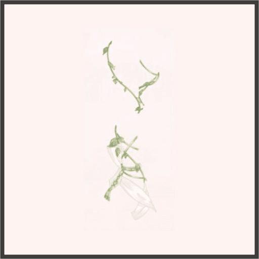 蔦のミサンガ