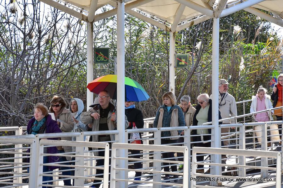 Экскурсия в Израиле на озере Хула