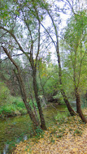 Photo: Mesones - río Mundo
