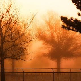 by Jay Graves - Landscapes Sunsets & Sunrises (  )