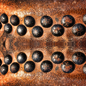 by Maynard Caryabudi - Abstract Patterns ( pwccurves )