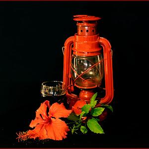 Rooi Lamp met Hibskus HUiwerk.jpg