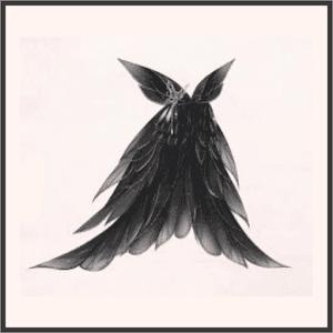蝶となり舞う