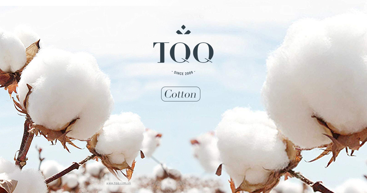 Vải cotton được dệt từ nguồn bông cao cấp, có độ thoáng, nhẹ, thấm hút mồ hôi tốt.