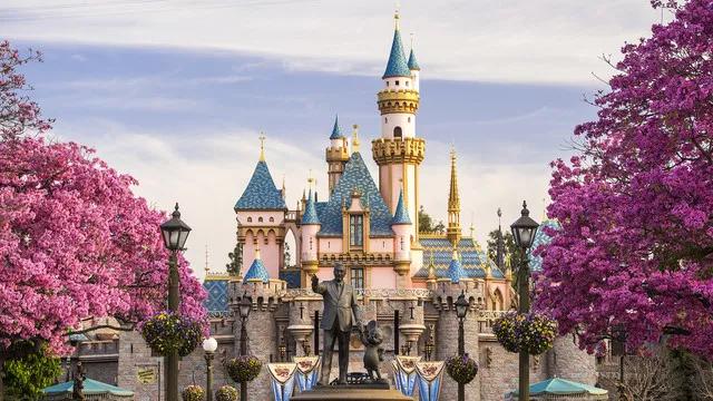 Summer Disneyland Trip