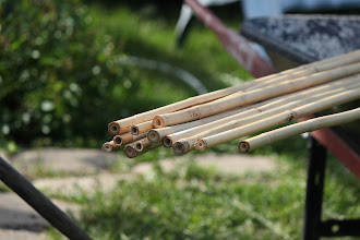 Photo: 8' bamboo canes