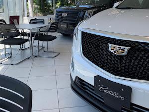 コルベット クーペ 2019 Chevrolet Corvette C7 Grand Sportのカスタム事例画像 たまさんの2020年05月07日13:27の投稿