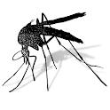 Mosquito Monitoring