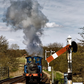 A good head of steam by Peter Greenhalgh - Transportation Trains ( uk, england, steam train, sussex, bluebell railway, horsted keynes )
