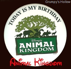 Animal Kingdom Birthday Button