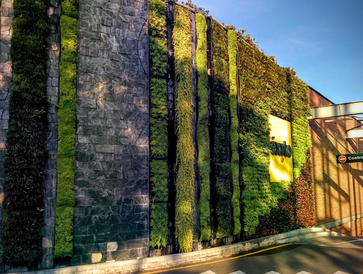 Jardinería vertical en Medellín, Colombia