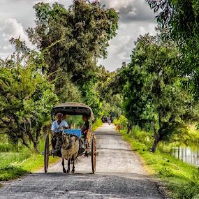 Myanmar transportation by Edzo Boven - Transportation Other ( smc pentax da 18-135 mm, myanmar, vakanties, 2014, pentax, pentax k-3 )
