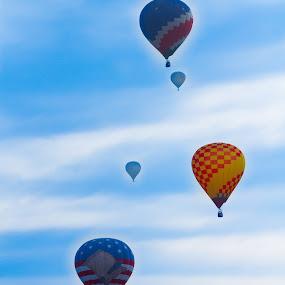 Hot air balloon festival. by Eliani Miranda - News & Events Entertainment ( sky, colors, hot, air, balloon )