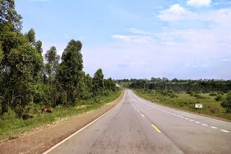 Photo: Lovely Ugandan countryside on our way to Kampala