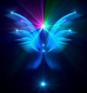 pleyadianas - mariposa renacimiento