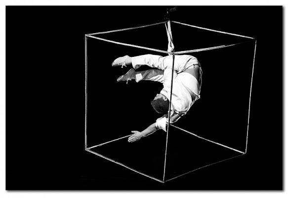 Dentro un cubo di Loredana Pagana