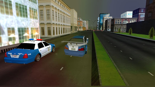 Real Police Chase