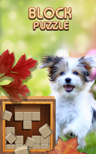 Block Puzzle Wood 1010: Classic Free puzzledom  screenshots 1